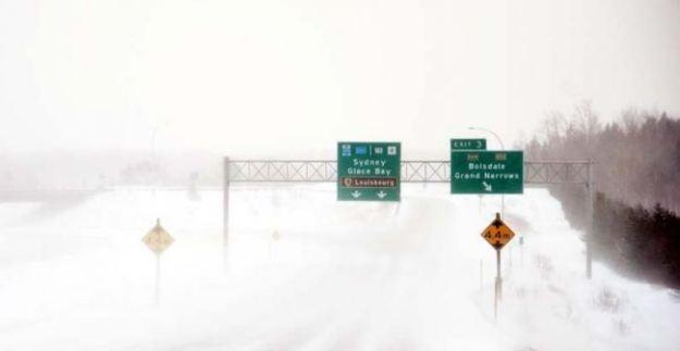 snow crop